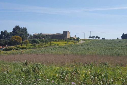 Baglio Contrada Aversa - 20190419_102014_P.jpg